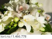 Купить «Свадебные кольца», фото № 1466778, снято 22 января 2010 г. (c) Михаил Ворожцов / Фотобанк Лори