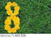 Цифра 8, выложенная из одуванчиков. Стоковое фото, фотограф Юлия Шилова / Фотобанк Лори