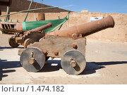 Купить «Старые орудия», фото № 1474182, снято 3 января 2010 г. (c) Яков Филимонов / Фотобанк Лори