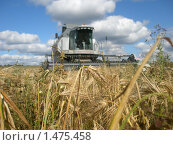 Уборка урожая. Стоковое фото, фотограф Валерий Нестеров / Фотобанк Лори