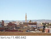 Купить «Аль-Каир, Египет», фото № 1480642, снято 3 января 2010 г. (c) Яков Филимонов / Фотобанк Лори