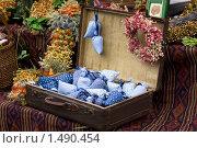 Сушеные полевые цветы и декоративные изделия ручной работы в старомодном чемодане. Стоковое фото, фотограф Sergii Korshun / Фотобанк Лори