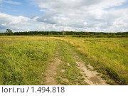 Купить «Летний день. Цветущий луг.», фото № 1494818, снято 10 августа 2008 г. (c) Катыкин Сергей / Фотобанк Лори