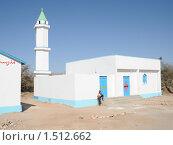 Купить «Мечеть в Харгейсе», фото № 1512662, снято 8 января 2010 г. (c) Free Wind / Фотобанк Лори