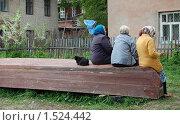 Сельская жизнь. Стоковое фото, фотограф Кирилл Пирязев / Фотобанк Лори