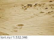Следы на песке. Стоковое фото, фотограф Андреев Павел / Фотобанк Лори
