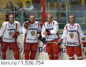 Купить «Игроки сборной России по хоккею», фото № 1536754, снято 30 августа 2009 г. (c) Марина Михайлова / Фотобанк Лори