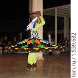 Купить «Национальный танец с юбками. Египет», фото № 1539682, снято 28 января 2010 г. (c) Гер Олег / Фотобанк Лори