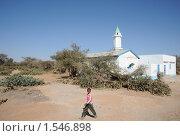 Купить «Мечеть на окраине Харгейсы», фото № 1546898, снято 8 января 2010 г. (c) Free Wind / Фотобанк Лори
