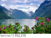 Купить «Цветы на фоне горного озера», фото № 1552218, снято 18 августа 2009 г. (c) Виталий Романович / Фотобанк Лори
