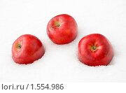 Купить «Яблоки на снегу», фото № 1554986, снято 14 марта 2010 г. (c) Владимир Гуторов / Фотобанк Лори