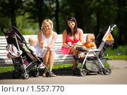 Купить «Молодые мамы», фото № 1557770, снято 24 июля 2009 г. (c) Ольга Сапегина / Фотобанк Лори