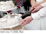 Купить «Свадебный торт», фото № 1558762, снято 3 октября 2009 г. (c) Владимир Сурков / Фотобанк Лори