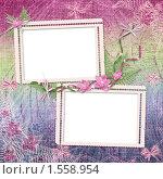Рамки для фотографий с цветами. Стоковая иллюстрация, иллюстратор Lora Liu / Фотобанк Лори