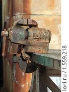 Купить «Ржавые тиски», эксклюзивное фото № 1559218, снято 13 марта 2010 г. (c) Яна Королёва / Фотобанк Лори