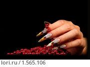 Купить «Ногти», фото № 1565106, снято 18 сентября 2009 г. (c) Константин Степаненко / Фотобанк Лори