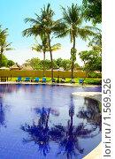 Купить «Пальмы отражаются в воде бассейна, Индонезия, Бали», фото № 1569526, снято 27 октября 2009 г. (c) Куликов Константин / Фотобанк Лори