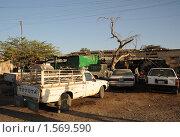 Купить «У автомастерской в Харгейсе», фото № 1569590, снято 8 января 2010 г. (c) Free Wind / Фотобанк Лори