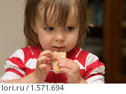 Ребенок. Стоковое фото, фотограф Татьяна Ежова / Фотобанк Лори