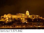 Будайский замок ночью. Стоковое фото, фотограф Александр Евсюков / Фотобанк Лори