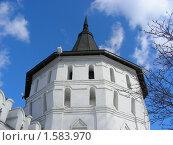 Купить «Москва. Свято-Данилов монастырь», эксклюзивное фото № 1583970, снято 17 марта 2010 г. (c) lana1501 / Фотобанк Лори