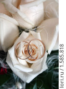 Свадебные кольца на розах, эксклюзивное фото № 1585818, снято 19 марта 2010 г. (c) Инна Козырина (Трепоухова) / Фотобанк Лори
