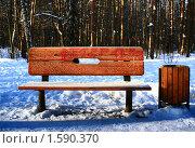 Заиндевелая скамейка в московском парке. Стоковое фото, фотограф Алексей Баранов / Фотобанк Лори