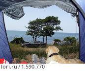 Купить «Вид из палатки», фото № 1590770, снято 1 июля 2009 г. (c) Ирина / Фотобанк Лори