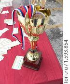 Кубок с медалями (2010 год). Редакционное фото, фотограф Багира / Фотобанк Лори