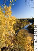 """Купить «Парк """"Оленьи ручьи""""», фото № 1594786, снято 3 октября 2008 г. (c) Дмитрий Ковязин / Фотобанк Лори"""