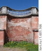 Цветы на фоне кирпичной стены (2009 год). Редакционное фото, фотограф Елена Бирюкова / Фотобанк Лори