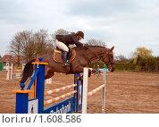 Девушка-жокей  на коне преодолевает препятствие (2010 год). Редакционное фото, фотограф Василий Шульга / Фотобанк Лори