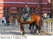 Купить «Конная милиция в Александровском саду», фото № 1622770, снято 11 апреля 2010 г. (c) Михаил Борсов / Фотобанк Лори