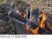 Купить «Мангал», фото № 1628434, снято 5 апреля 2008 г. (c) Спасский Игорь / Фотобанк Лори