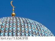 Купить «Купол соборной мечети Санкт-Петербурга», эксклюзивное фото № 1634918, снято 15 апреля 2010 г. (c) Александр Алексеев / Фотобанк Лори
