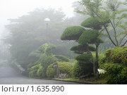 Купить «Япония, пейзаж с туманом в национальном парке Хаконе», фото № 1635990, снято 4 августа 2007 г. (c) Андрей Солодовников / Фотобанк Лори