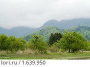 Горный пейзаж Японии с низкими облаками (2008 год). Стоковое фото, фотограф Андрей Солодовников / Фотобанк Лори