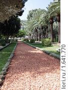 Купить «Бахайские сады. Хайфа. Израиль», фото № 1641770, снято 2 сентября 2009 г. (c) Кузнецов Дмитрий / Фотобанк Лори