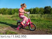 Купить «Девочка на велосипеде», фото № 1642950, снято 26 августа 2009 г. (c) Losevsky Pavel / Фотобанк Лори