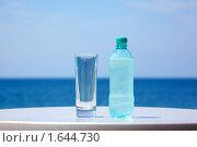 Купить «Бутылка воды и стакан на столе под открытым небом на фоне моря», фото № 1644730, снято 21 июля 2009 г. (c) Losevsky Pavel / Фотобанк Лори