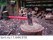 Купить «Топор», фото № 1644918, снято 17 июня 2008 г. (c) Николай Богоявленский / Фотобанк Лори