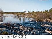 Купить «Разлившаяся река в Карелии», фото № 1646510, снято 15 апреля 2010 г. (c) Кекяляйнен Андрей / Фотобанк Лори