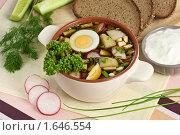 Купить «Окрошка на квасе с яйцом», эксклюзивное фото № 1646554, снято 6 апреля 2010 г. (c) Лидия Рыженко / Фотобанк Лори