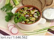 Купить «Вегетарианская окрошка на квасе», эксклюзивное фото № 1646562, снято 6 апреля 2010 г. (c) Лидия Рыженко / Фотобанк Лори