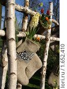 Купить «Русский стиль для Голландии - цветы в валенке», эксклюзивное фото № 1652410, снято 16 апреля 2010 г. (c) Natalia Nemtseva / Фотобанк Лори