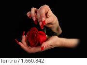 Купить «Ногти», фото № 1660842, снято 20 марта 2010 г. (c) Константин Степаненко / Фотобанк Лори