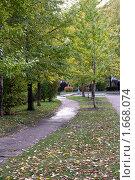 Купить «Дорожка в парке осенью», фото № 1668074, снято 13 октября 2009 г. (c) Абакумова Евгения / Фотобанк Лори