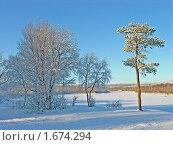 Купить «Зима», фото № 1674294, снято 24 февраля 2008 г. (c) Мирзоянц Андрей / Фотобанк Лори