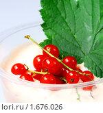 Купить «Фруктовый йогурт с красной смородиной», фото № 1676026, снято 18 декабря 2009 г. (c) ElenArt / Фотобанк Лори