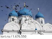 Купить «Боголюбово. Фрагмент Свято-Боголюбского монастыря», фото № 1676550, снято 28 марта 2010 г. (c) Gagara / Фотобанк Лори